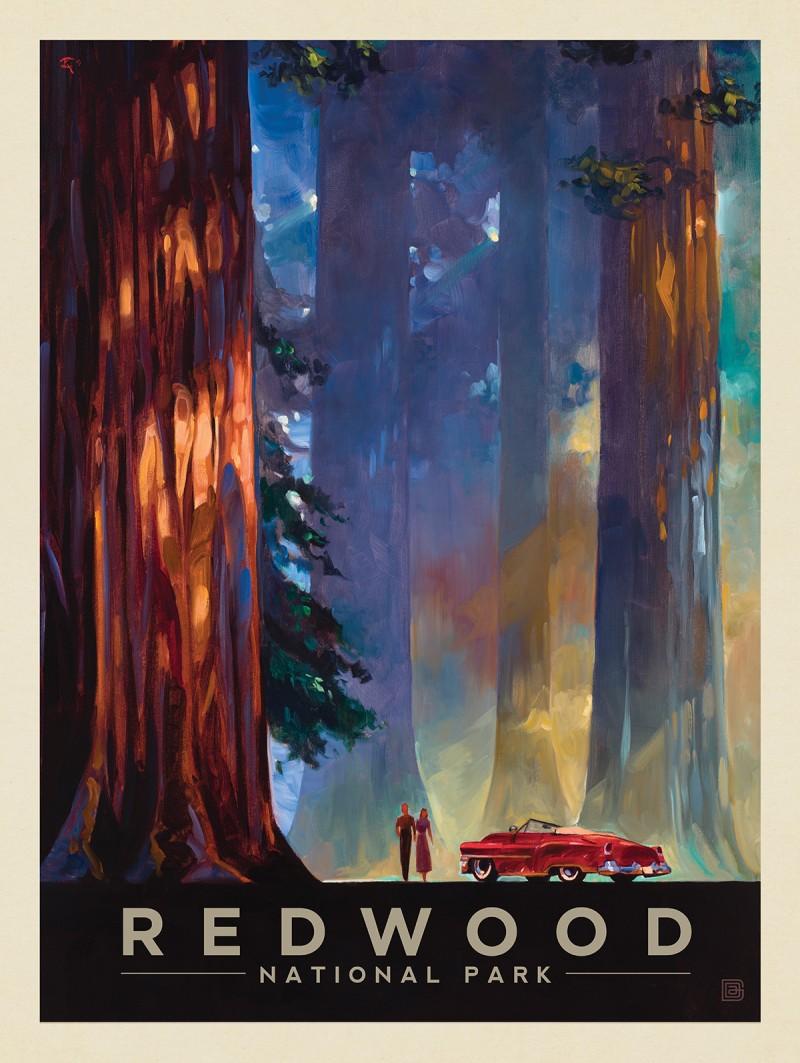 Redwood National Park: Among the Giants