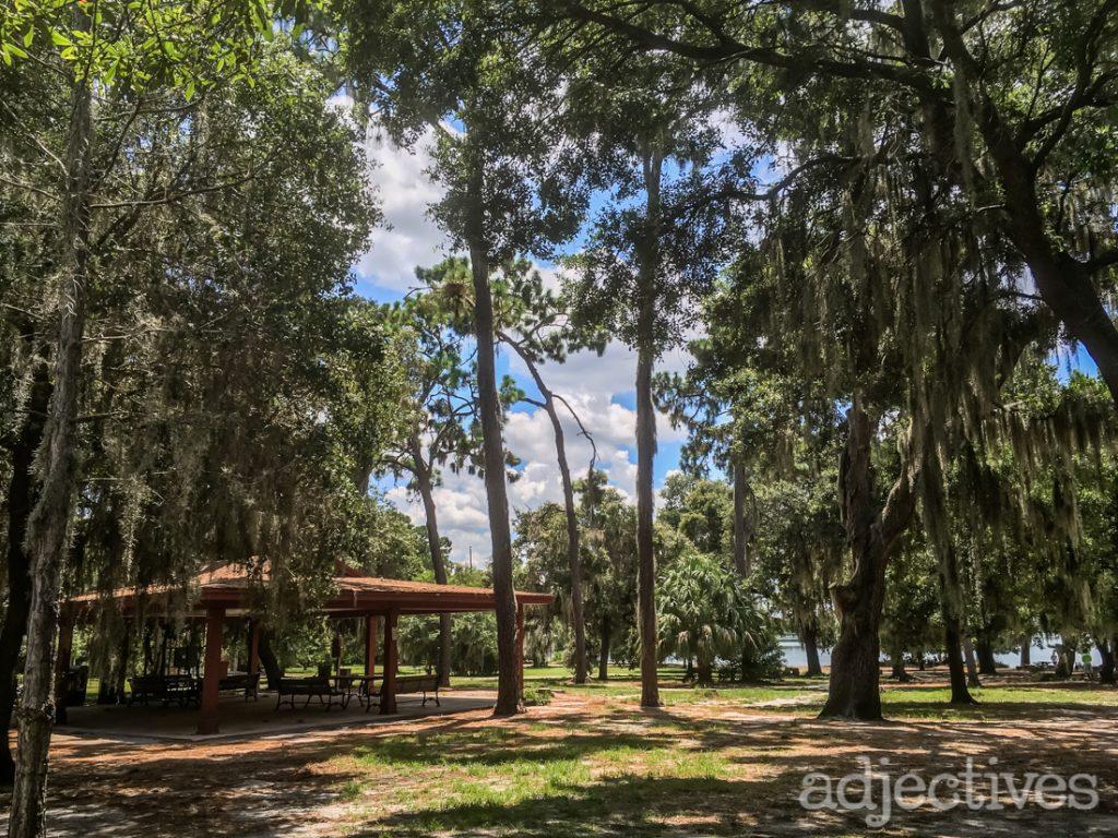 Local Community Place - Baldwin Dog Park