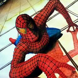 Spiderman size - 16x11In - 16x11