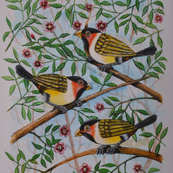 Birds painting 29 size - 9x12In - 9x12