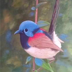 bird size - 24x36In - 24x36
