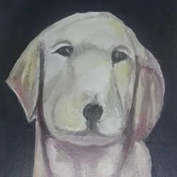 A Labrador size - 12x16In - 12x16
