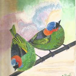Five colored Bird size - 8.5x10.5In - 8.5x10.5