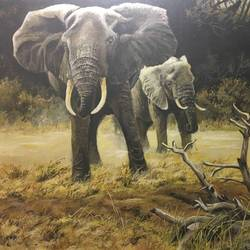 African Elephants size - 48x36In - 48x36