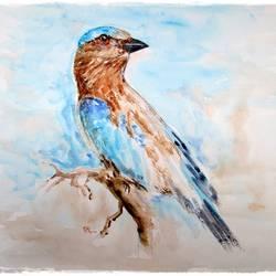 Birds size - 15x11In - 15x11