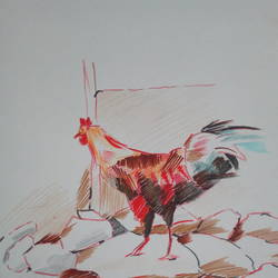 poultry life size - 10x13In - 10x13