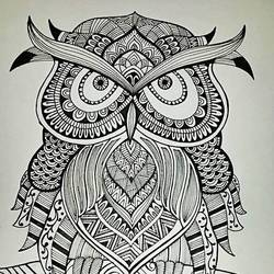 Owl - bird size - 8x10In - 8x10