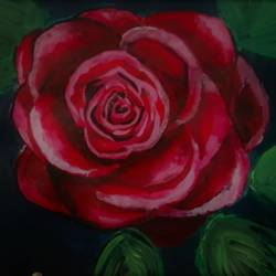 red rose size - 10x12In - 10x12