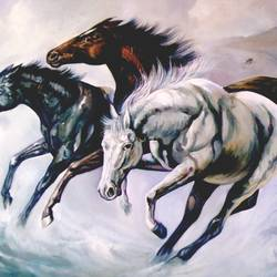 running horse with different shades size - 42x30In - 42x30
