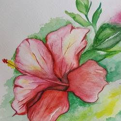 Hibiscus  size - 5.8x8.2In - 5.8x8.2