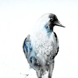 zen crow size - 17x22In - 17x22