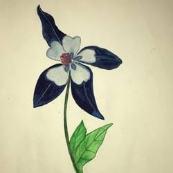 Winter Flower size - 7x10In - 7x10