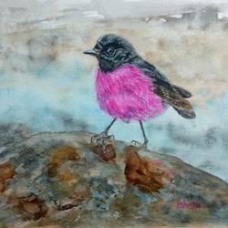 Pink Robin bird size - 12x9In - 12x9