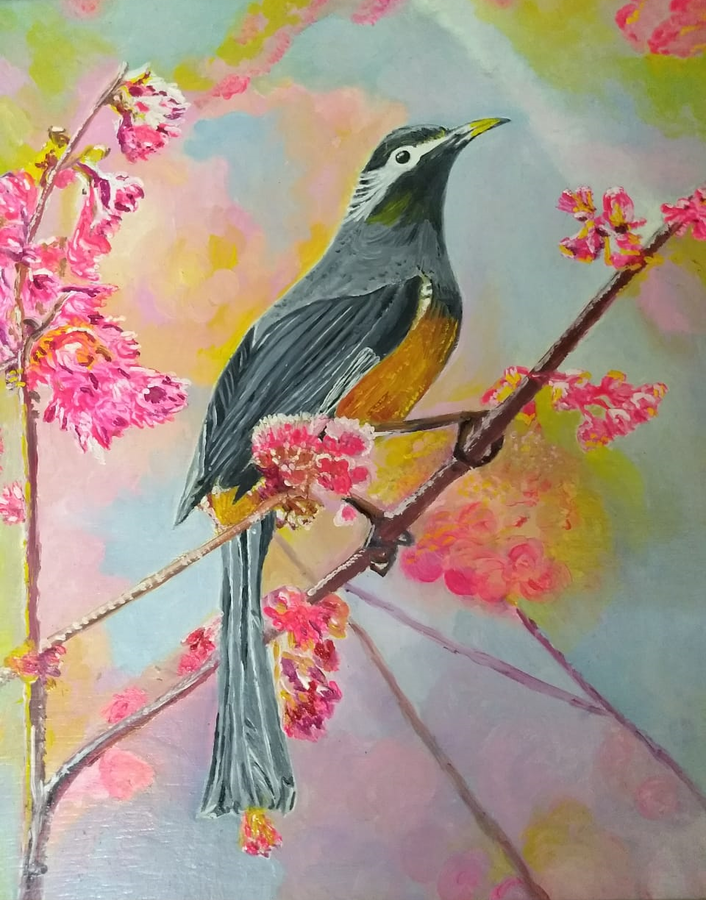bird on cherry blossom tree, 10 x 12 inch, jugnu bakshi,paintings,wildlife paintings,flower paintings,nature paintings,paintings for dining room,paintings for living room,paintings for bedroom,paintings for office,paintings for hotel,paintings for school,paintings for hospital,ply board,oil,10x12inch,GAL0969320043Nature,environment,Beauty,scenery,greenery,bird,flower,sparrow,branch,pink flower,yellow,bird on cherry blossom tree size - 10x12in,ADR9969320043