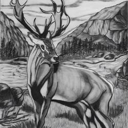 The Stag size - 14x22In - 14x22