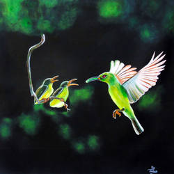 Beautiful Birds size - 24x23In - 24x23