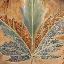 Maple Leaf  size - 48x37In - 48x37
