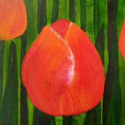 Tulips size - 12x12In - 12x12