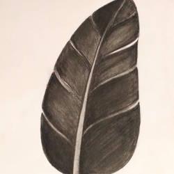 Burnt leaf size - 10.6x14.5In - 10.6x14.5