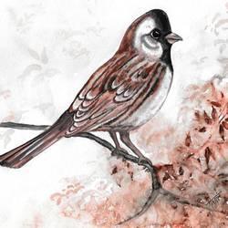BIRDS  size - 7 x9 In - 7 x9