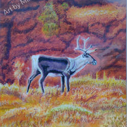 Lonely Deer size - 9x13In - 9x13