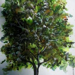 Tree of Duars-1 size - 9x12In - 9x12