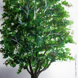 Tree of Duars-4 size - 9x12In - 9x12