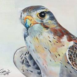 Birds Eye On Goal size - 7.5x6.5In - 7.5x6.5