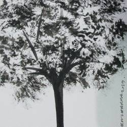 Tree of Duars at night-4 size - 5.5x11.75In - 5.5x11.75
