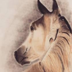 Dark Horse size - 14.5x19.5In - 14.5x19.5