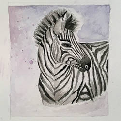 Zebra painting,watercolor small painting size - 5x6In - 5x6