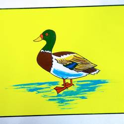 Duck size - 11x7In - 11x7