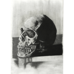 End Of Life Skull size - 11.7x16.5In - 11.7x16.5