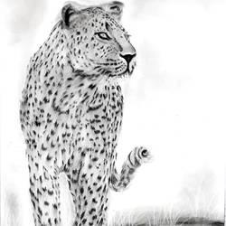Leopard  size - 11.7x16.5In - 11.7x16.5
