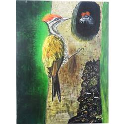 Woodpecker Feeding Chick size - 16x12In - 16x12