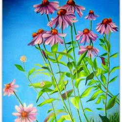 Blooming field  size - 12x18In - 12x18