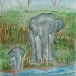 The Elephant's Trail size - 11.8x16.5In - 11.8x16.5