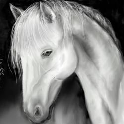 White Horse art print by AdroitArt