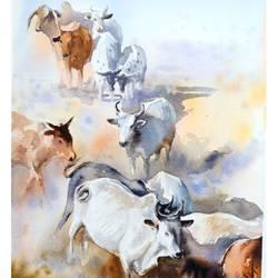 COWS, - 15x11