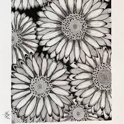 Sunflower art - 16x11.5