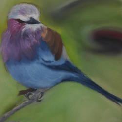 BEAUTIFUL BIRD - 8.27x11.69