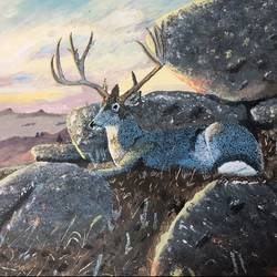 Deer in landscape - 16x24