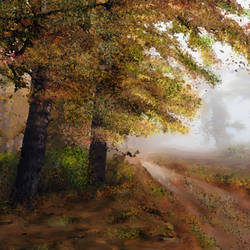Autumn Forest - 35x19