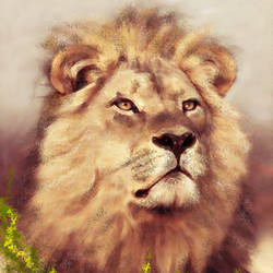 Lion in forest land - 20x34