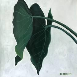 Flora and fauna  - 16x18
