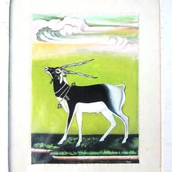 The Deer - 10x12