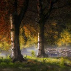 Landscape - 35x20