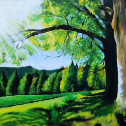Landscape - 24x15