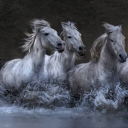 Horses on the water - 35x20