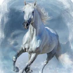 Running White Horse - 24x30